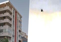 Kocaelide apartmanda yarasa paniği