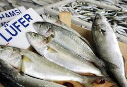 Lüfer balığı nasıl pişirilir Tavada ve ızgarada lüfer balığı pişirme