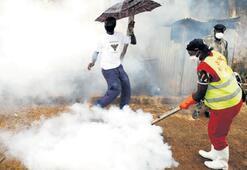 'Afrika için felaket' uyarısı