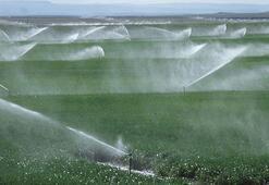 Ankarada 162 bin dekar tarım arazisinde sulama dönemi
