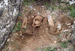 Siirtte PKKlı teröristlerce araziye tuzaklanan patlayıcı tespit edildi