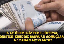 Temel ihtiyaç desteği kredisi başvurusu nasıl yapılır, sonuçlar ne zaman açıklanır 10 bin TL Halkbank, Vakıfbank ve Ziraat Bankası 6 ay ödemesiz kredi sorgulama ekranı...
