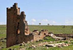 Diyarbakırda salgın sonrası başlayacak kazılar, tarihi değiştirebilir
