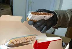 Arnavutköyde kaçak sigara baskını