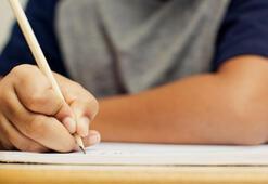 Anneanne Nasıl Yazılır TDK sözlükte Anane Mi Yoksa Anne Anne Olarak Mı Yazıyor İşte Doğru Yazılışı