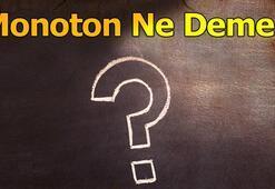 Monoton Ne Demek Tdkya Monotonlaşma Ve Monotonluk Anlamı Nedir