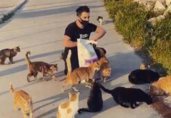 Yusuf Güney sokak hayvanlarını unutmadı