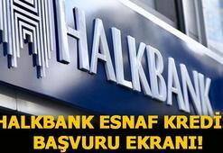 Halkbank esnaf destek kredisi başvurusu ekranı 25 bin TL 36 ay vadeli Halkbank esnaf kredi başvurusu nasıl yapılır, şartlar neler