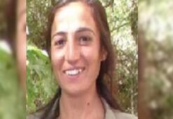 Kırmızı listedeki PKKlı terörist kanserden ölmüş