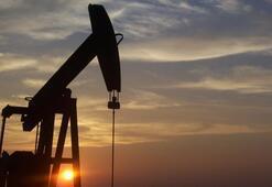 ABDnin ham petrol stokları hızlı artış gösterdi
