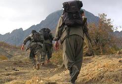 Terör gruplarından kaçan 3 terörist teslim oldu