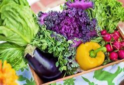 """""""Organik pazardaki ürünler dahi organik olmayabilir"""""""