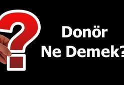 Donör Ne Demek (Tdk) Donör Kan Ve Donör Olmak Ne Demektir