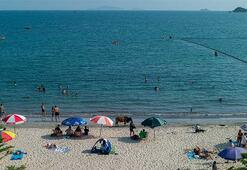 Hong Kongda corona virüse rağmen halk, plajlara akın etti