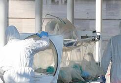Son dakika haberi... Dünya genelinde 250 binin üzerinde kişi corona virüsten öldü