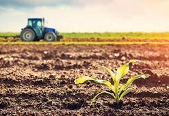 Son dakika haberler: Yeni yatırım trendi ufak tarım arazisi