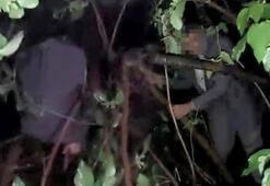 Kumar baskınında polise yakalanmamak için ağaca çıktı