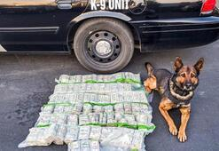 Polisten kaçarken yol kenarına yaklaşık 1 milyon dolar attılar