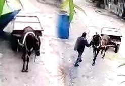 At arabasıyla gelip hırsızlık yaptı