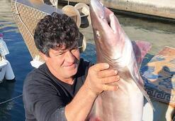 Burası Bodrum Balıkçı ağında görünce büyük şok yaşadı