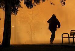 Son dakika Aydos Ormanı yangınına müebbet ve 25 yıl hapis