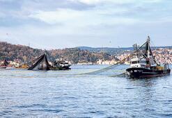 Virüs balıkçıyı vurdu aracıyı kaldırmak şart