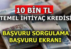 Temel ihtiyaç kredisi başvuru sorgulama: Ziraat - Vakıfbank - Halkbank başvuru sonuçları öğrenme ekranı