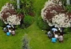 Maltepede pes dedirten görüntü E-5'te piknik yaptılar