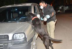 Adanada hava destekli narkotik operasyonu