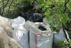 Diyarbakır'da 810 kilo uyuşturucu ele geçirildi