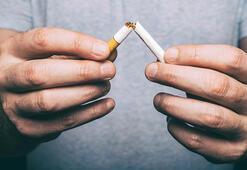 Sigarayı bırakmak isteyenlerden Yeşilaya rekor başvuru