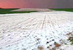Mardinde dolu, tarım arazilerini vurdu
