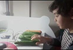 Corona virüsten sıkıldı, salatalık ve havuçtan piyano yaptı