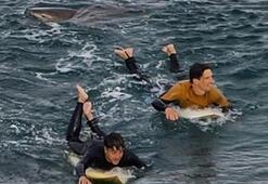 Şoke eden olay Köpek balığı ile dövüştü