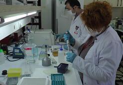 TÜBİTAK, corona virüs aşısı için tarih verdi