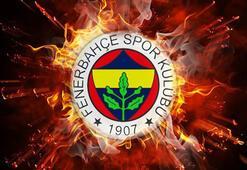 Fenerbahçeden liglerin tescili sonrası açıklama