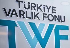 Türkiye Varlık Fonundan kamu bankalarının sermayelerine ilişkin açıklama