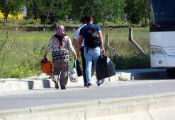Şehirler arası taşımacılıkta corona fırsatçıları