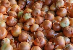 Kuru soğan tarlada 60 kuruş, raflarda 2-3 liraya satılıyor