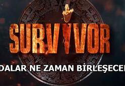 Survivorda adalar ne zaman birleşecek Survivor 2020de takımlar birleşti mi