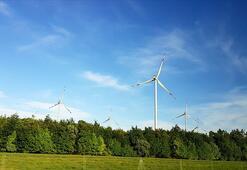 Yenilenebilir enerji santrali kurulumları 20 yıl sonra ilk kez düşecek