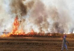 Teröristler Deyrizor'da sivillerin tarım arazilerini yaktı