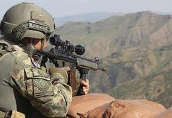 Etkisiz hale getirilen terörist, PKKnın sözde Ağrı Dağı Genel Sorumlusu çıktı