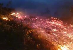İnegölde orman yangını 10 dönümlük alanküle döndü