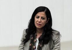 Son dakika...Diyarbakırda PKK operasyonu Ayla Akat Ata gözaltına alındı