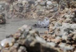 Denizlide karayolunun altından geçen sıcak su kaynağı, asfaltı delip gün yüzüne çıktı