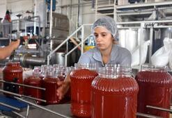 Türkiyenin salça ihracatı, salgında arttı