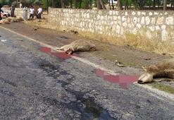 Otomobil sürüye daldı Ortalık savaş alanına döndü