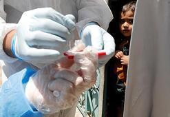 Mısır, Cezayir ve Irakta corona virüs kaynaklı ölümler arttı