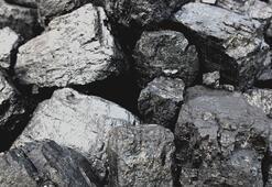 TKİden kömür rezervinin işletilmesi için ihale